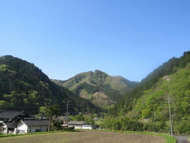 yahazu3.jpg