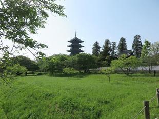 kokubunji18.jpg