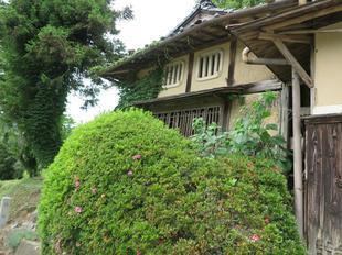 西の茶屋3.jpg