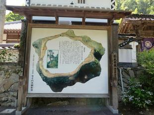7-6gokurakuji31.jpg