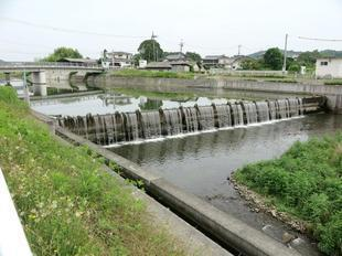 7-5hirodogawa2.jpg