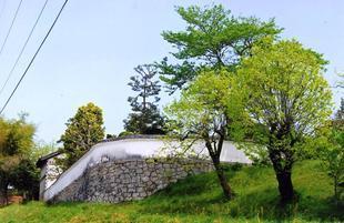 chikamitsu1109.jpg
