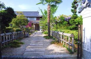 chikamitsu2111.jpg