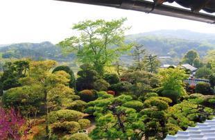 chikamitsu3-1.jpg