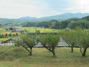 satokumon2.jpg