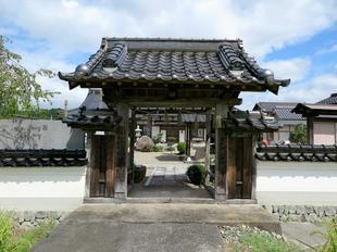 kichi10.jpg