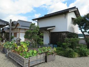 kichi11.jpg