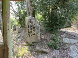 senryu-koen10.jpg