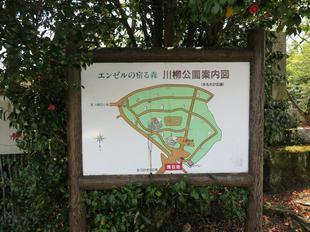 senryu-koen15.jpg