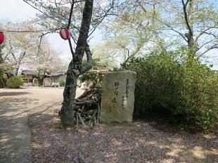 senryu-koen5.jpg