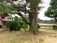 fukusenji-k18.jpg