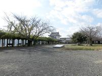 2019-momiji28.jpg