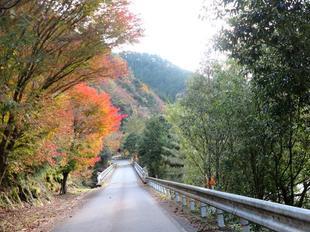 inaba-tsugawa13.jpg