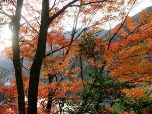 inaba-tsugawa14.jpg