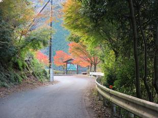 inaba-tsugawa22.jpg