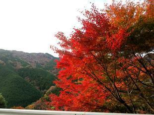 inaba-tsugawa23.jpg