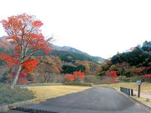 inaba-tsugawa3.jpg