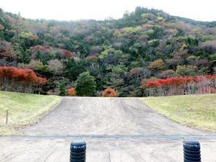 inaba-tsugawa4.jpg
