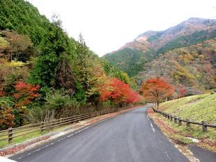 inaba-tsugawa6.jpg