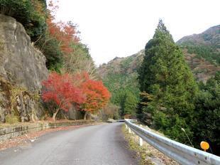 inaba-tsugawa8.jpg