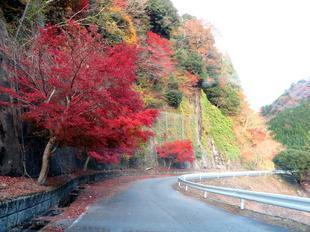 inaba-tsugawa9.jpg