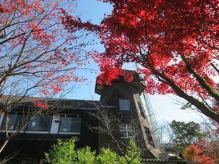 mimasakanooka21-6.jpg