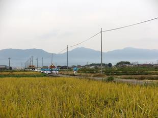 tanokuma11-1.jpg