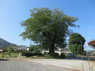 fukushimake23.jpg