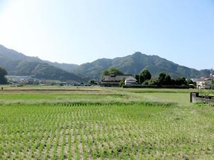 fukushimake3.jpg