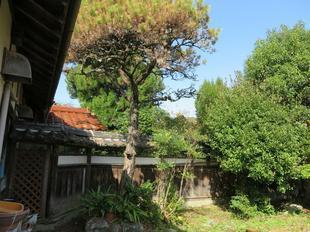 fukushimake42.jpg