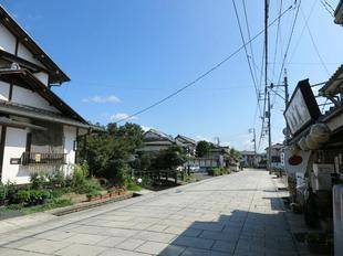 kimura0.jpg