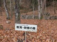 shitori34.jpg