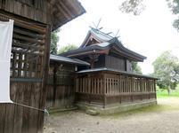 tondo-yaide15.jpg