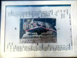 yayoi-haru2020-16.jpg
