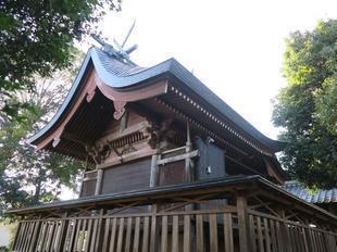 yayoi-haru2020-5.jpg