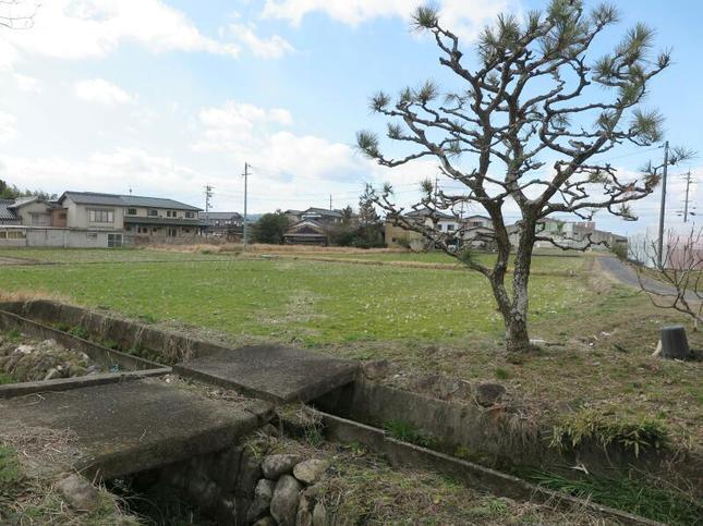 2020-2-1nakashima17.jpg