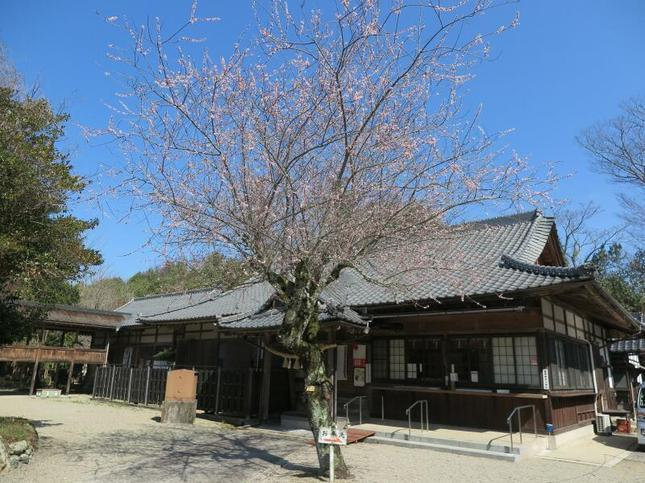 3-12nakayama14.jpg