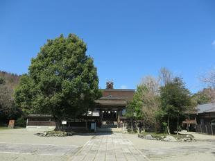 3-12nakayama19.jpg