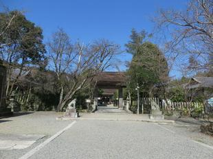 3-12nakayama20.jpg