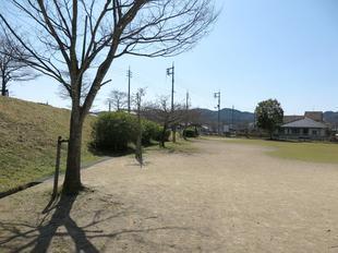 3-25chihara-koen5.jpg