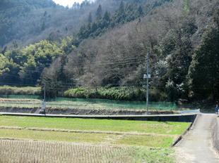 mimasaka-syoya10.jpg