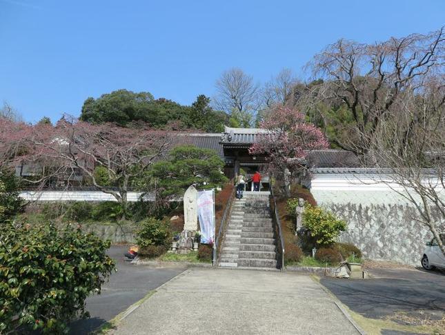 senkouji2020-3-17-2.jpg