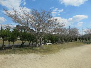takanokawahigashi-koen17.jpg