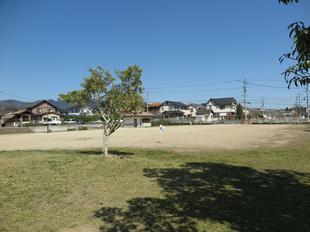 tenouji-koen2.jpg