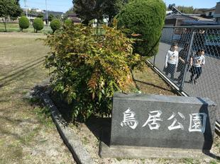 torii-koen3.jpg