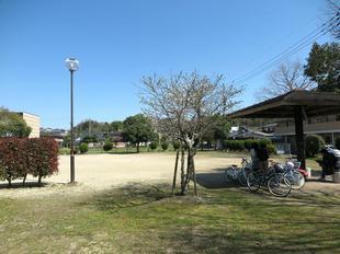 torii-koen6.jpg
