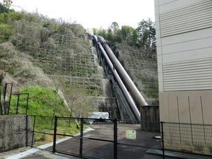4-17-kagaminokobusi18.jpg