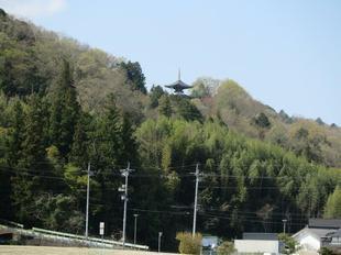 4-9inokuchi-koen3.jpg