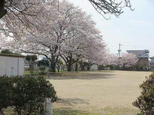 hanzako4-3-1.jpg