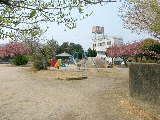 jyosai-sakura11.jpg